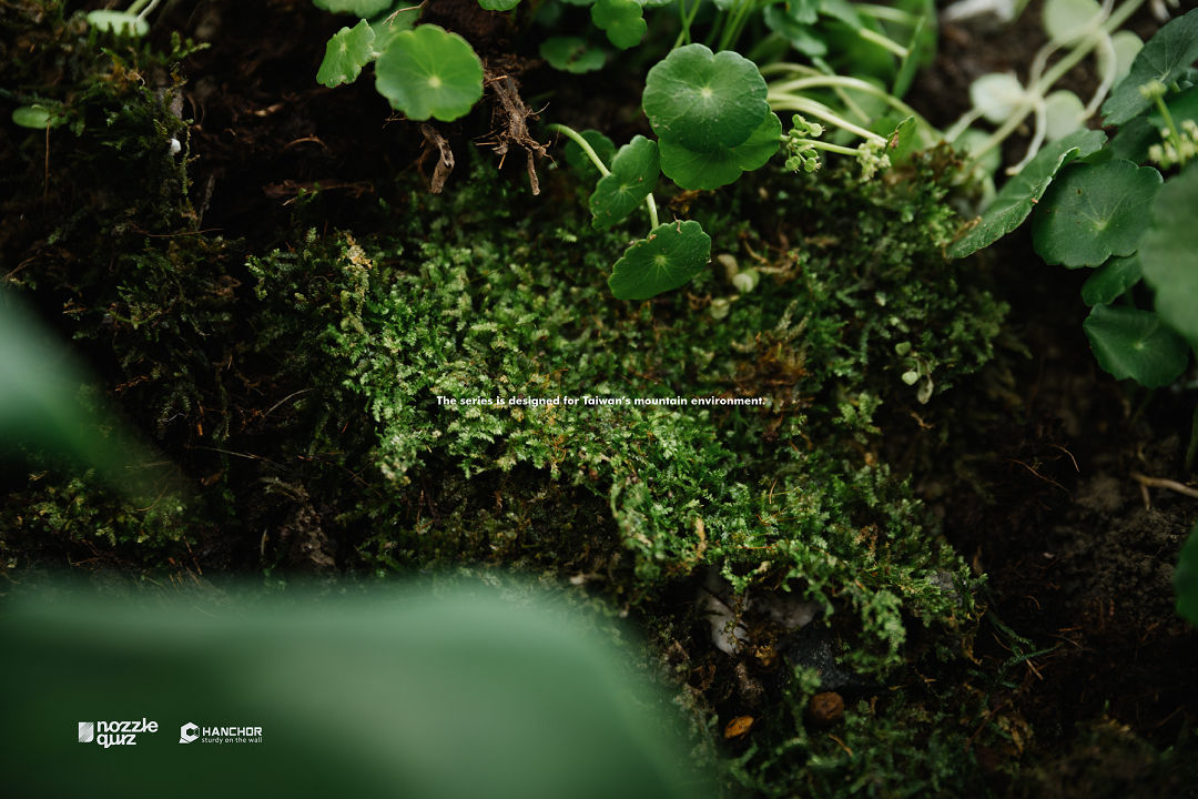 nozzle-quiz-hanchorl-hiking-socks-forest-trail (9)